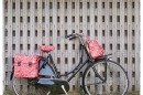 Capa de Selim Basil Wanderlust Saddle Cover Vintage Red Go By Bike